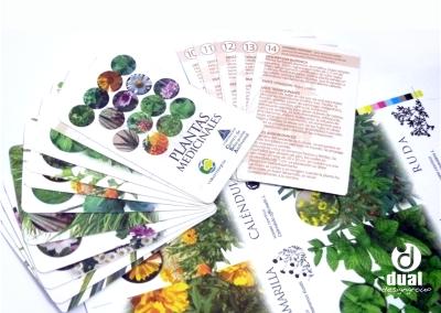 Material didáctico: Uso de plantas medicinales